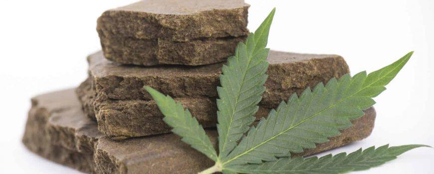 Hashish by honest Marijuana.com